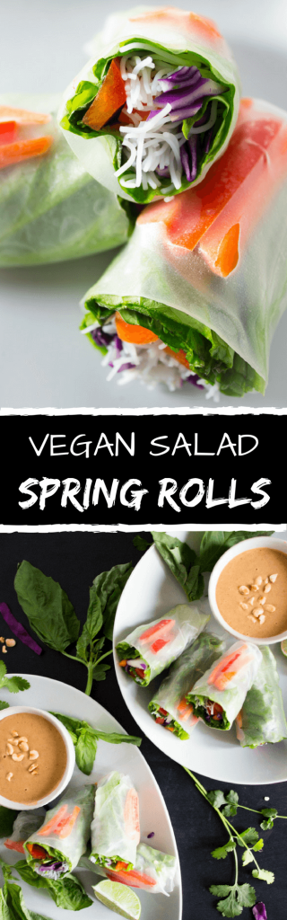 Vegan Salad Spring Rolls - A fresh and delicious way to eat a rainbow medley of vegetables. Accompanied with a sweet & slightly spicy peanut sauce. Perfect for a quick and easy lunch, dinner, or even as a snack. | passmesometasty.com