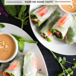Two plates of vegan salad spring rolls with peanut dipping sauce are ready to be served!