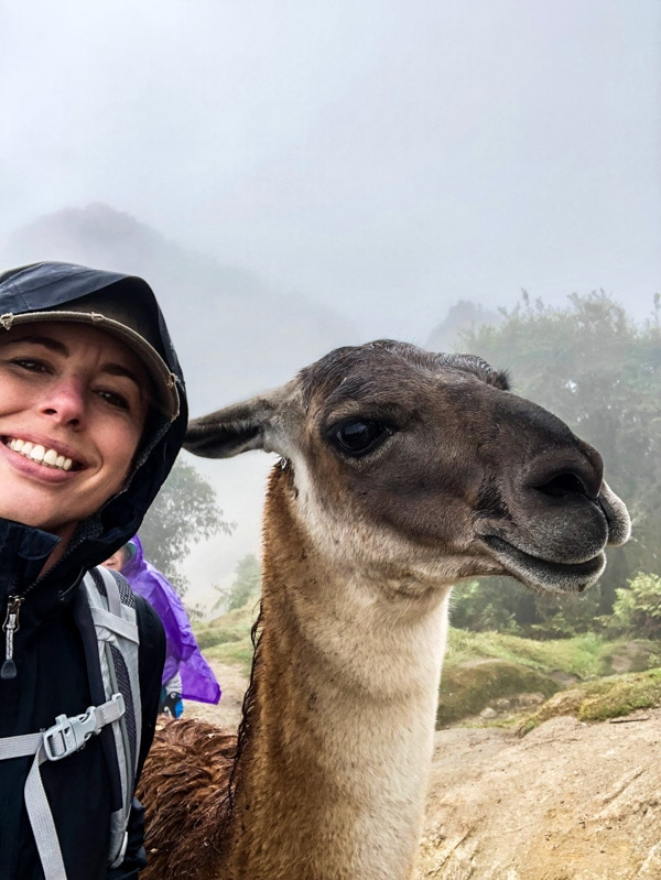 Shannon of Pass Me Some Tasty next to a llama she met along the Inca Trail.