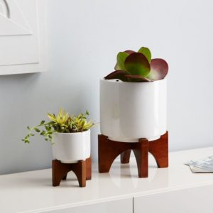 West Elm Turned Wood Leg Tabletop Planter in several different sizes